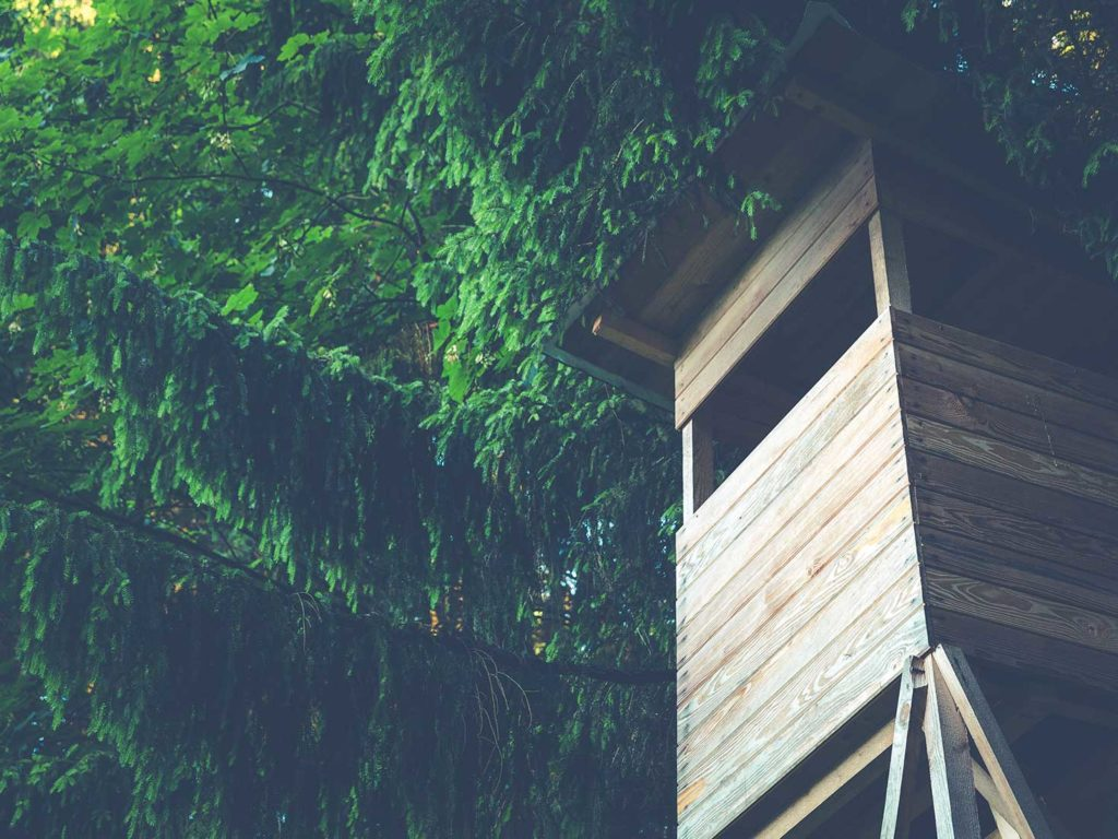 andreadolcettidesign casa legno x - designer - architetto ferrara